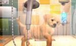PlayStation Vita Pets 265x175